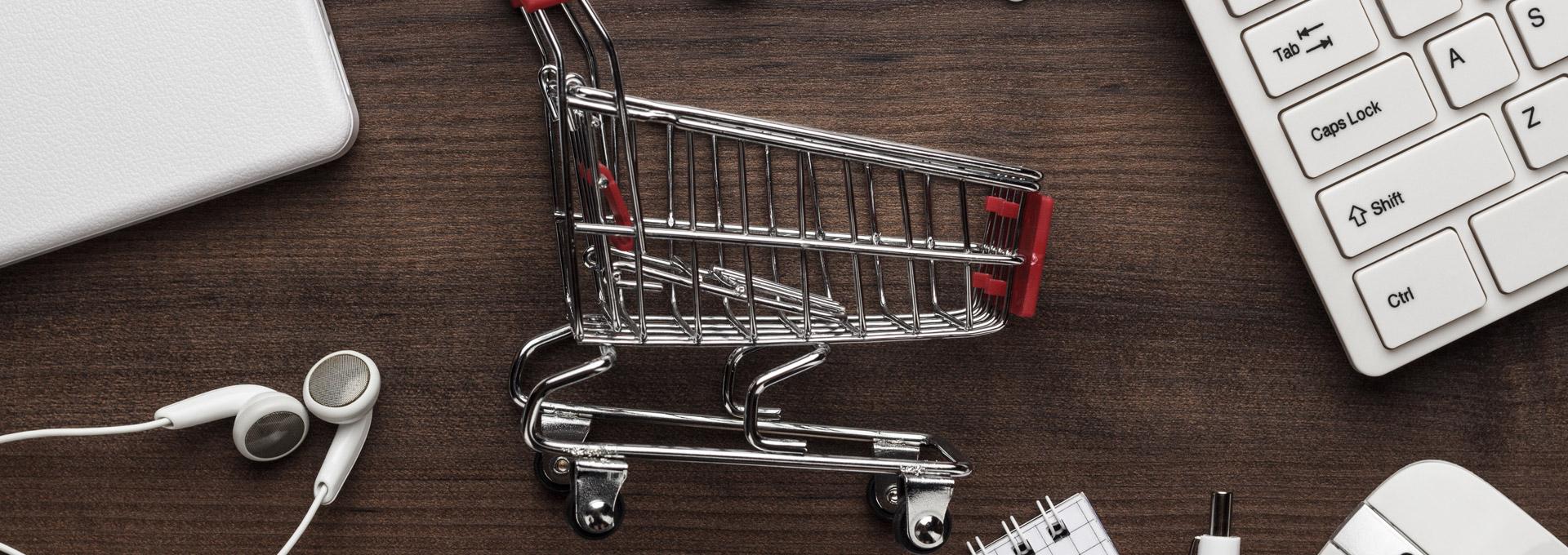 online shop programmieren lassen